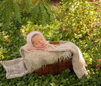 outdoor newborn baby photos