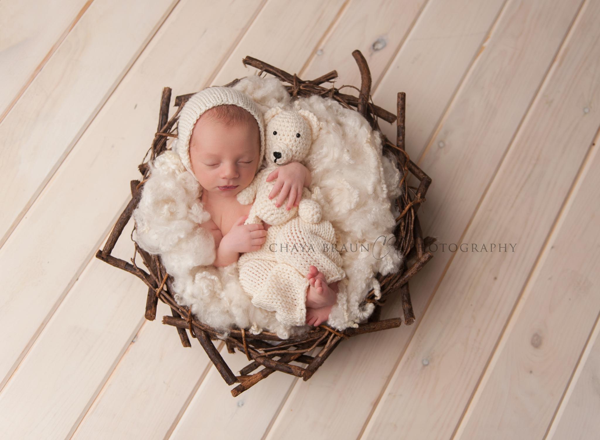 newborn baby in nest