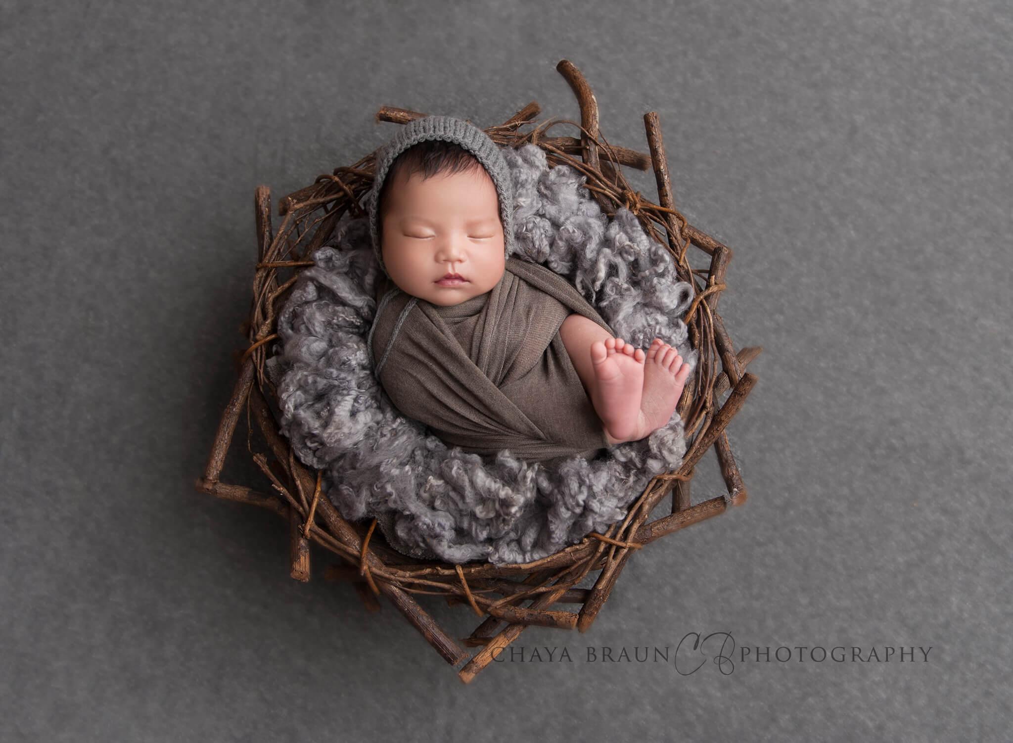 newborn baby in branch nest