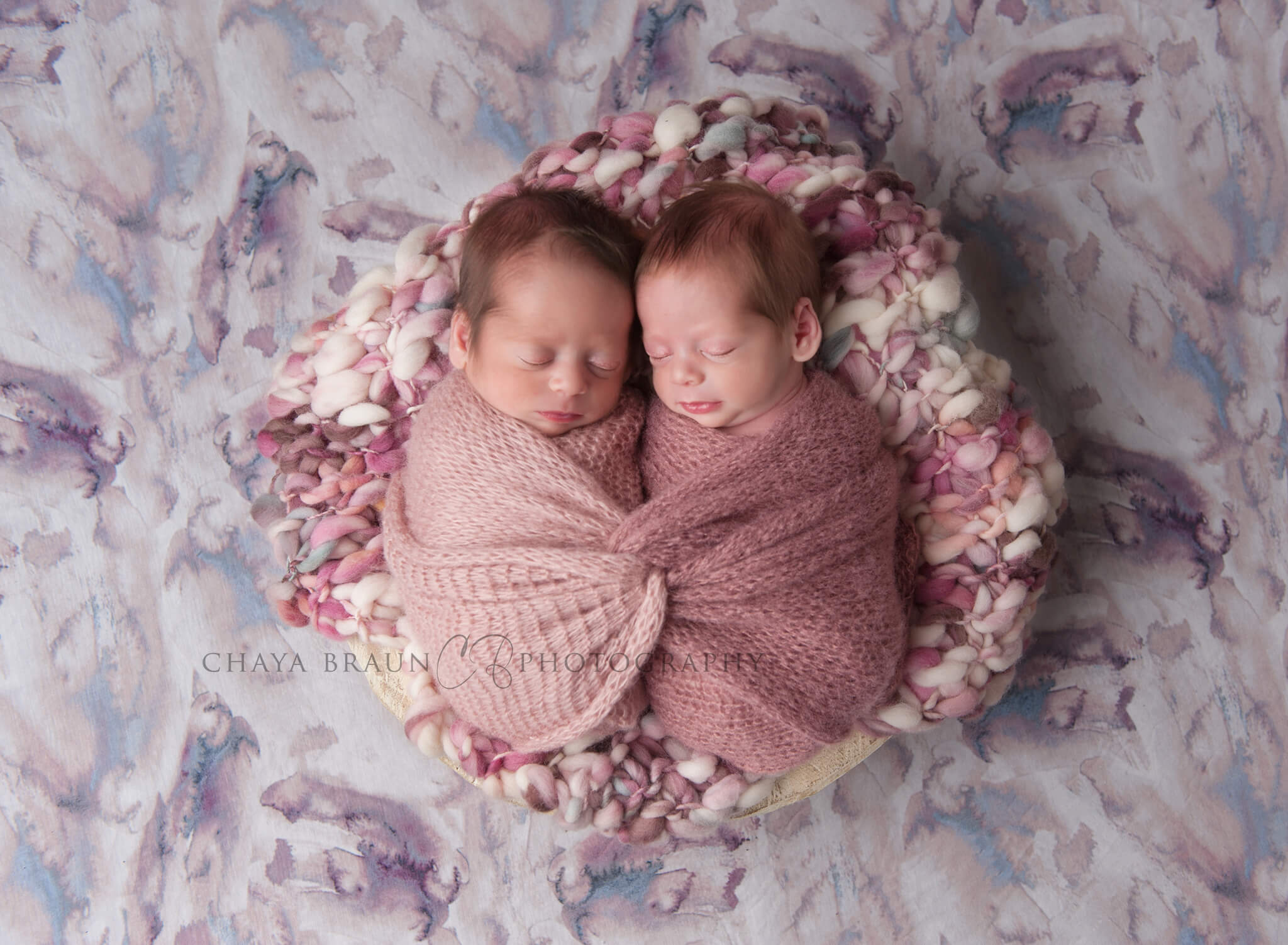 twin babies photographer in Baltimore