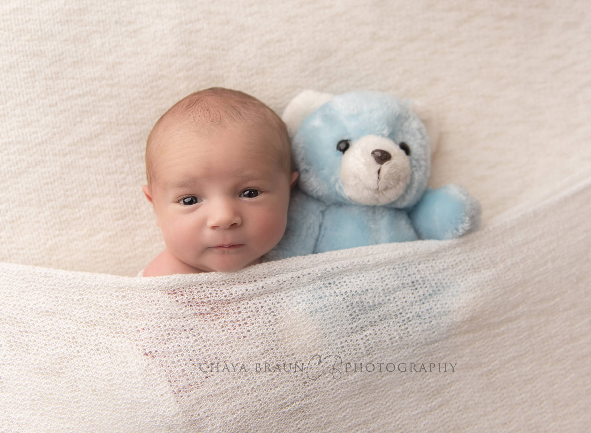newborn baby photographer in Maryland and Virginia